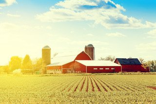 A Not So Idyllic Farm: Case Example By Employment Solicitors, Perth